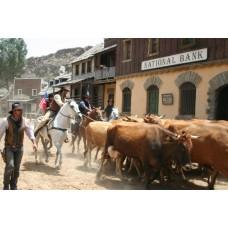 Western Scene Canvas Framed
